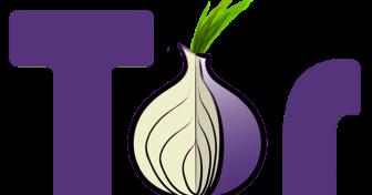 Minden, amit tudnia kell a Tor Böngésző használatá